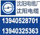 中国弛名商标8沈阳电缆